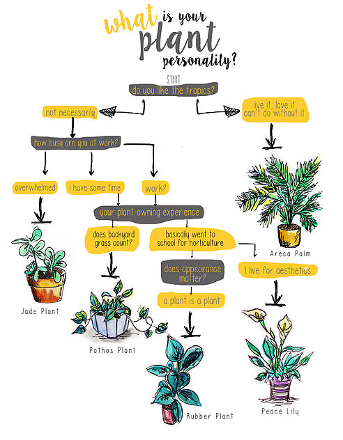 what is your plant personality